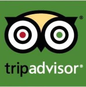 TripAdvisor-Icon-728x735-297x300